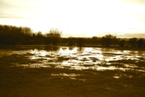 One of many flooded fields in Oxfordshire